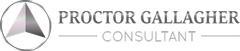 Proctor Gallagher Consultant